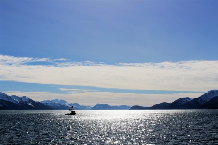 Alaska 4 SWT Views